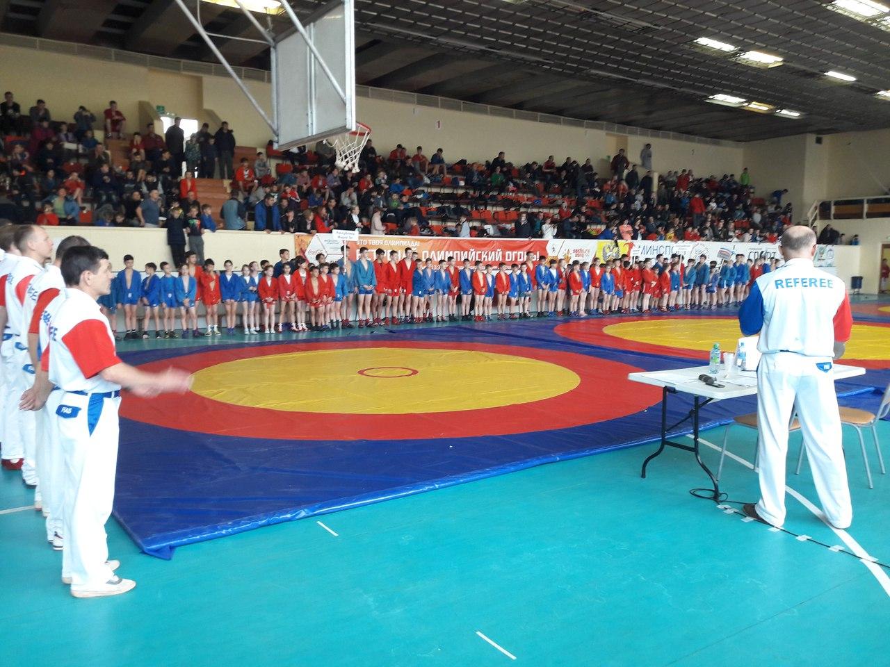 Открытое Первенство Республики Марий Эл по борьбе самбо